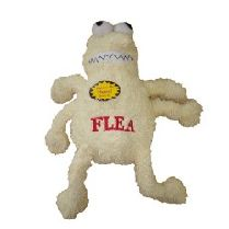 FLEAS & TICKS - yup, we also stock fleas and ticks for your dog ;-)