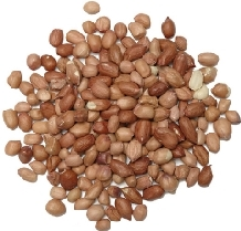 Peanuts Nuts Red Skins : Wild bird feed : Choose your size